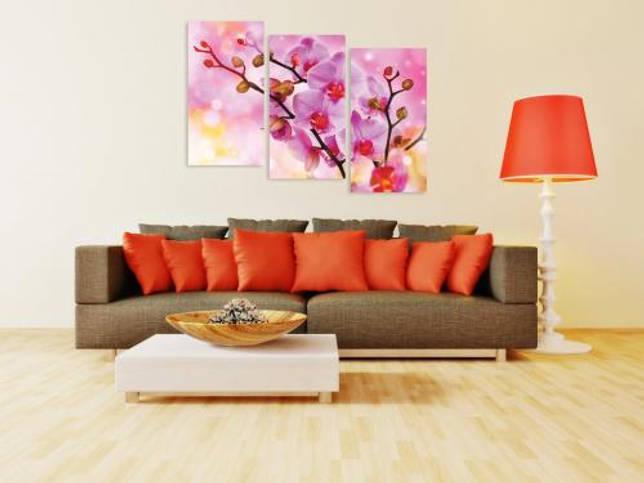 Растение в интерьере жилого дома орхидея. Орхидеи в интерьере (21 фото): красивое расположение цветка и использование обоев с ним Ищем авторов для нашего сайта, которые ОЧЕНЬ хорошо разбираются в дизайне интерьеров.